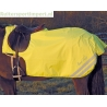 Mark Todd Fleece Lined Fluorescent Exercise Sheet