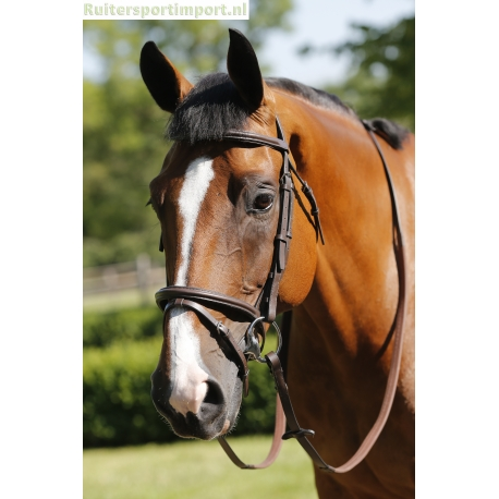 JHL Flash Bridle