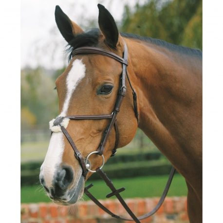 Mark Tod Plain Raised Bridle With Grakle Noseband