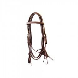 Lakota Smooth Pony